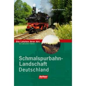 Schmalspurbahn-Landschaft